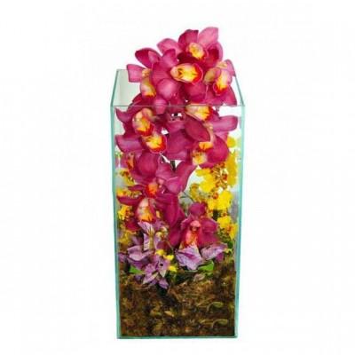 Arranjo Orquídea Super Luxo